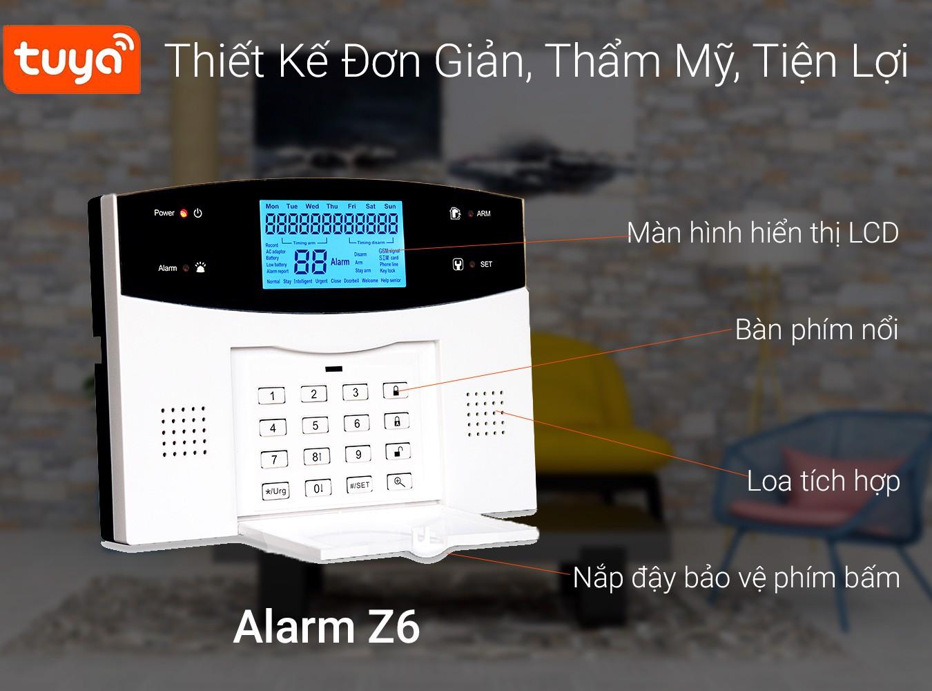 Z6-thiet-ke-tham-my