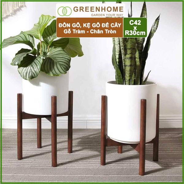 Đôn gỗ, kệ kê chậu cây nội thất bằng gỗ Tràm màu Đen chân Tròn C42xR32cm - Tặng kèm dĩa lót D27cm