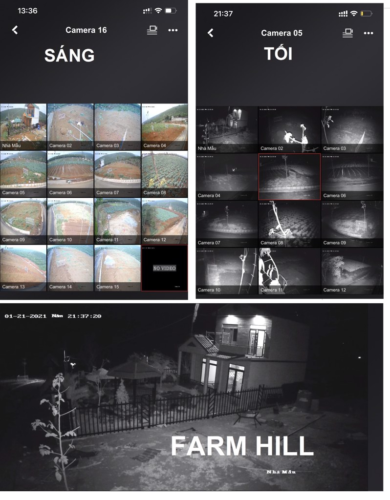 camera Farm hill bao loc