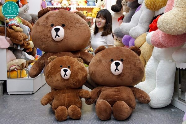 gau-teddy-brown-co-lon