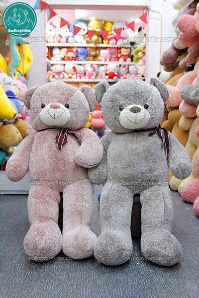 chat-luong-gau-teddy