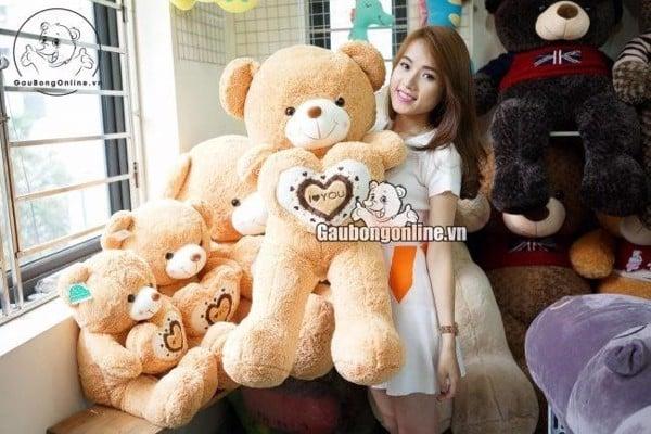 Nguồn gốc gấu teddy - cover