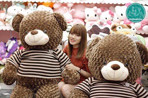ga-teddy-socola