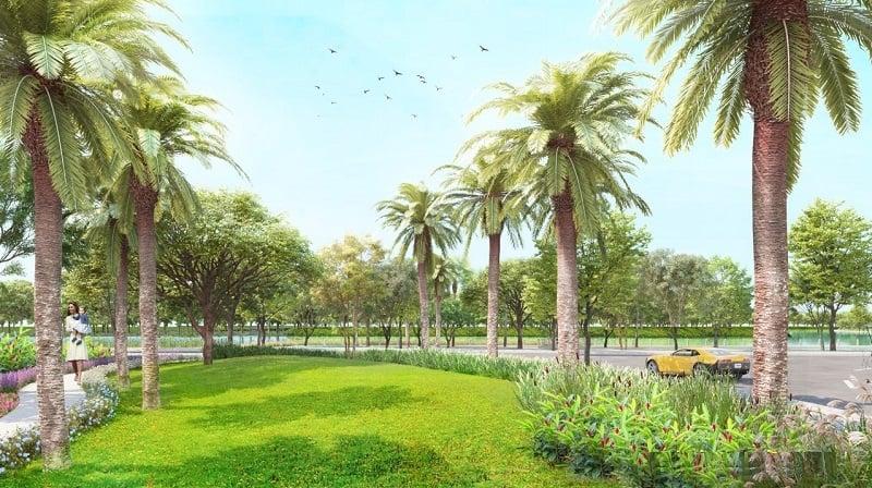 Không gian xanh ngập tràn cây cối