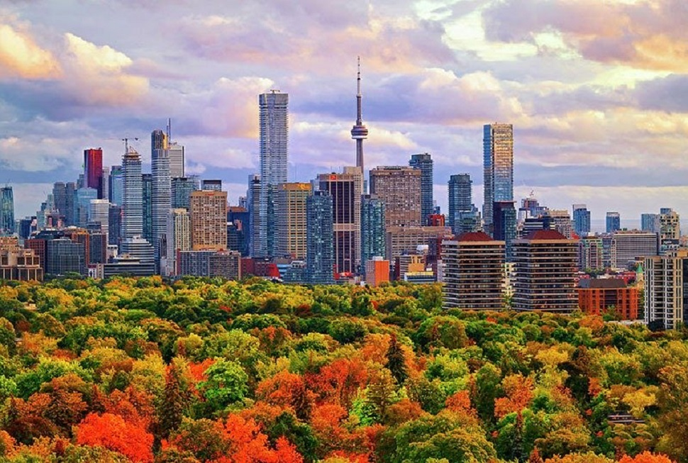 Thành phố Toronto với những toà cao ốc chọc trời hiện đại sau những đồi lá phong đang đổi màu vàng đỏ vào mùa thu