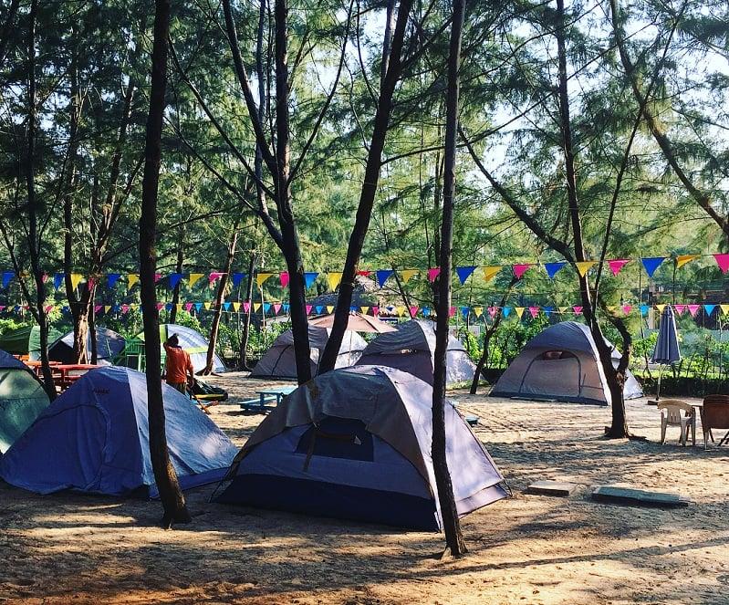 Dựng lều và tổ chức ăn uống