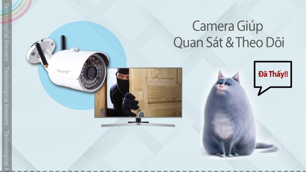 Camera quan sát mang lại khả năng quan sát và theo dõi tuyệt vời