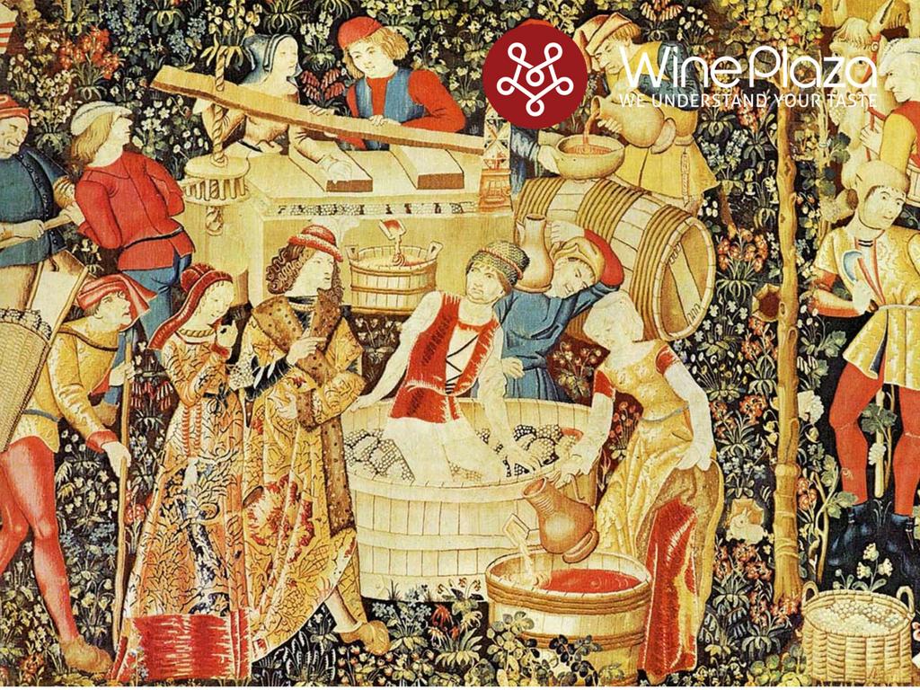 Câu chuyện của rượu vang - WinePlaza
