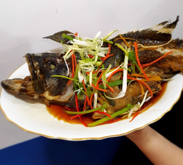 cá mú trân châu hấp hongkong