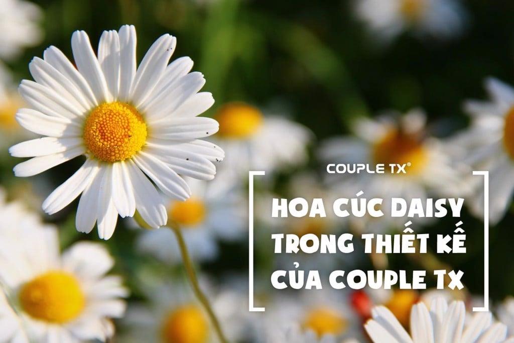 HOA CÚC DAISY TRONG THIẾT KẾ CỦA COUPLE TX