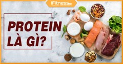 /blogs/kien thuc the hinh/whey protein concentrate la gi