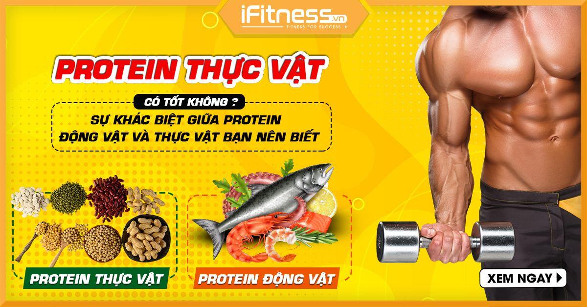 protein dong vat va protein thuc vat
