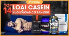 /blogs/kien thuc the hinh/whey protein la gi