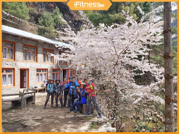 ifitness cuong ly everest base camp