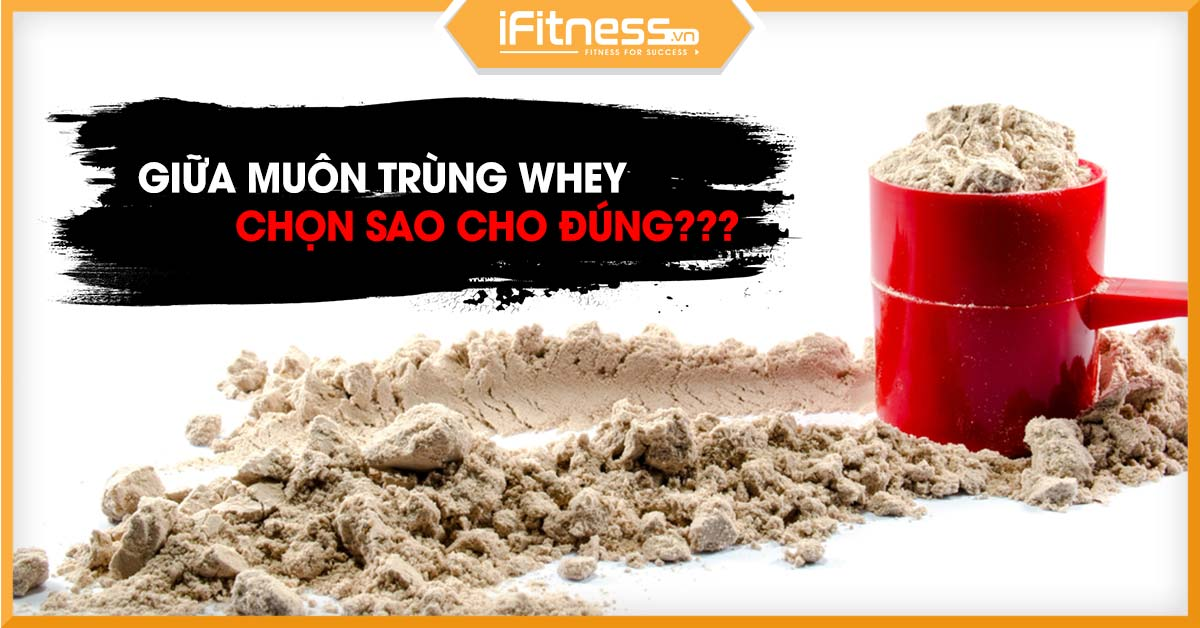 cach chon whey protein nao tot