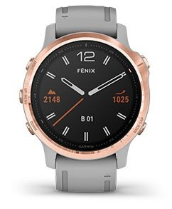 fenix6S-feature-19
