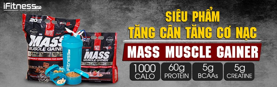 iFitness Collection Tang Can Mass Muscle Gainer