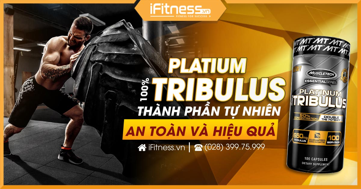ifitness cover platinum tribulus