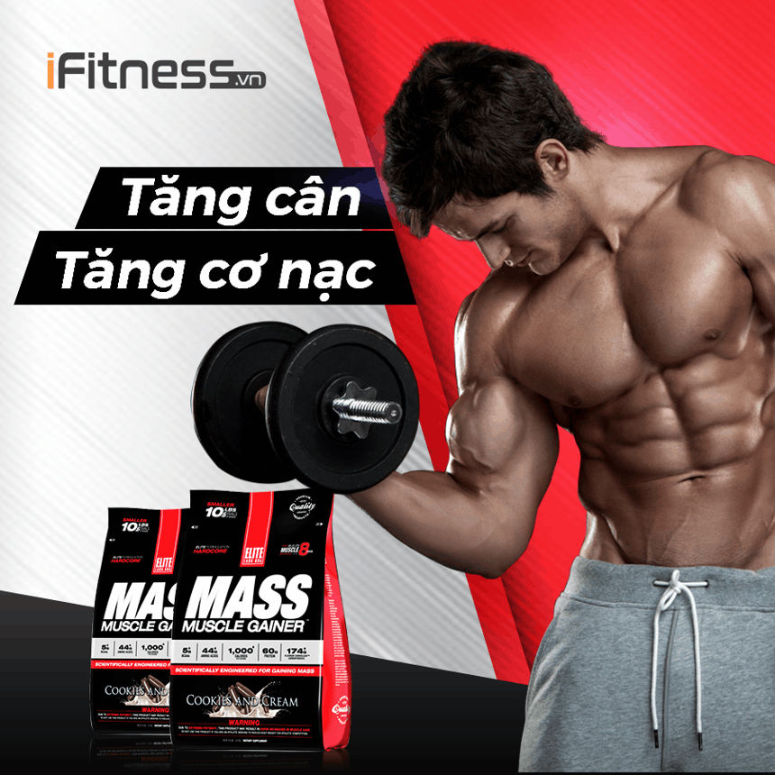 Mass Muscle Gainer 2.3kg banner