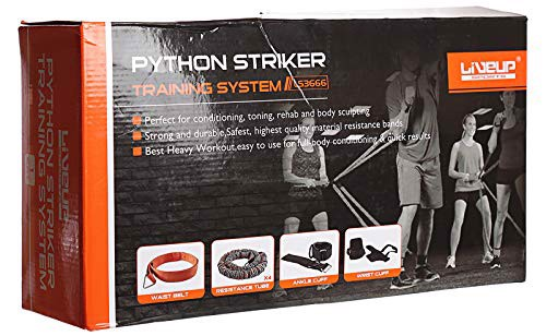 python striker training system