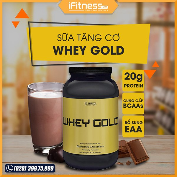sua tang co whey gold