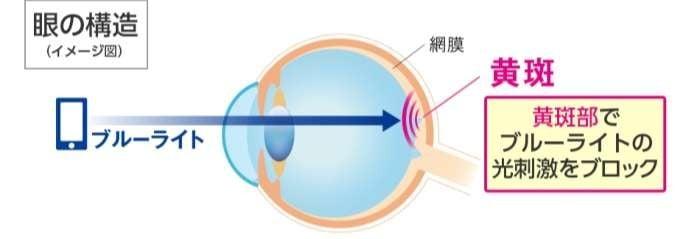 Lutein giữ vai trò ngăn cản sự tác động của ánh sáng xanh