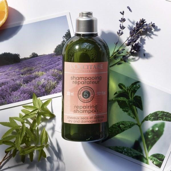 dầu gội trị rụng tóc L'Occitane Aromaco Dry And Damaged Repairing