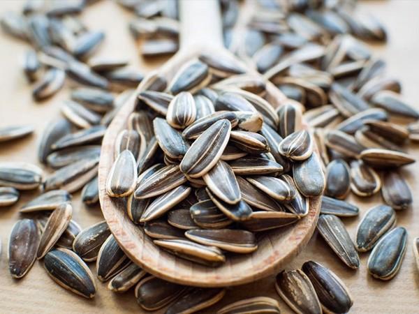 vitamin e có nhiều trong hạt hướng dương