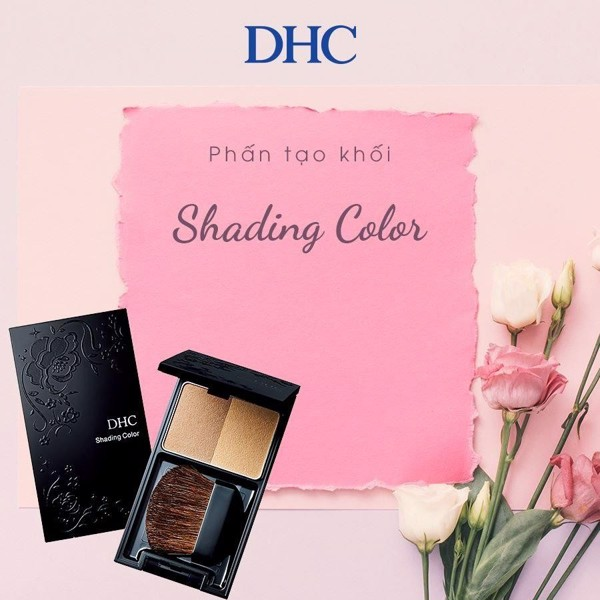 Phấn tạo khối DHC Shading Color