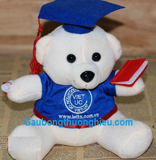 Gấu bông cử nhân