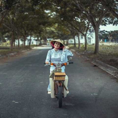 Vietnam motorbike circulating data - Market research