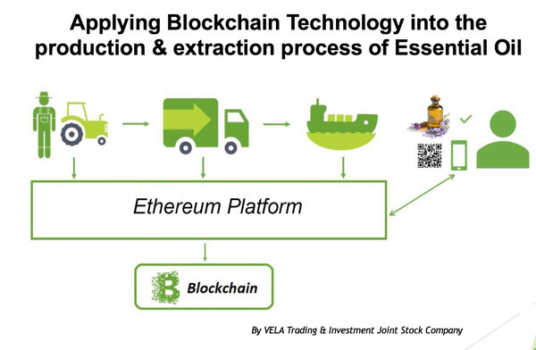 Applying Blockchain Essential Oil - Hoa Thom Co La - Vietnam