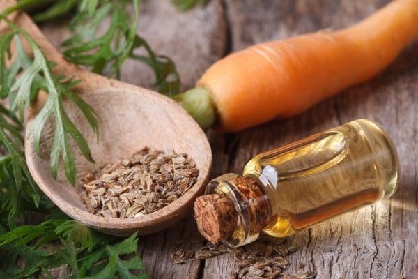 Tinh Dầu Hạt Carrot - Carrot Seed Essential Oil
