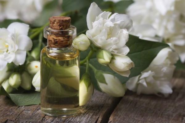 Tinh Dầu Hoa Nhài - Jasmine Essential Oil