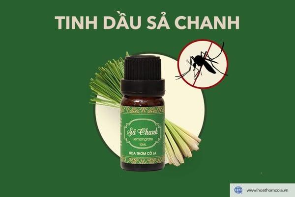 Tinh dầu Sả Chanh đuổi muỗi hiệu quả - Hoa Thơm Cỏ Lạ