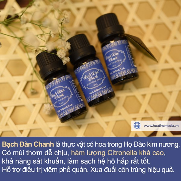 Tinh Dầu Bạch Đàn Chanh - Lemon Eucalyptus Essential Oil