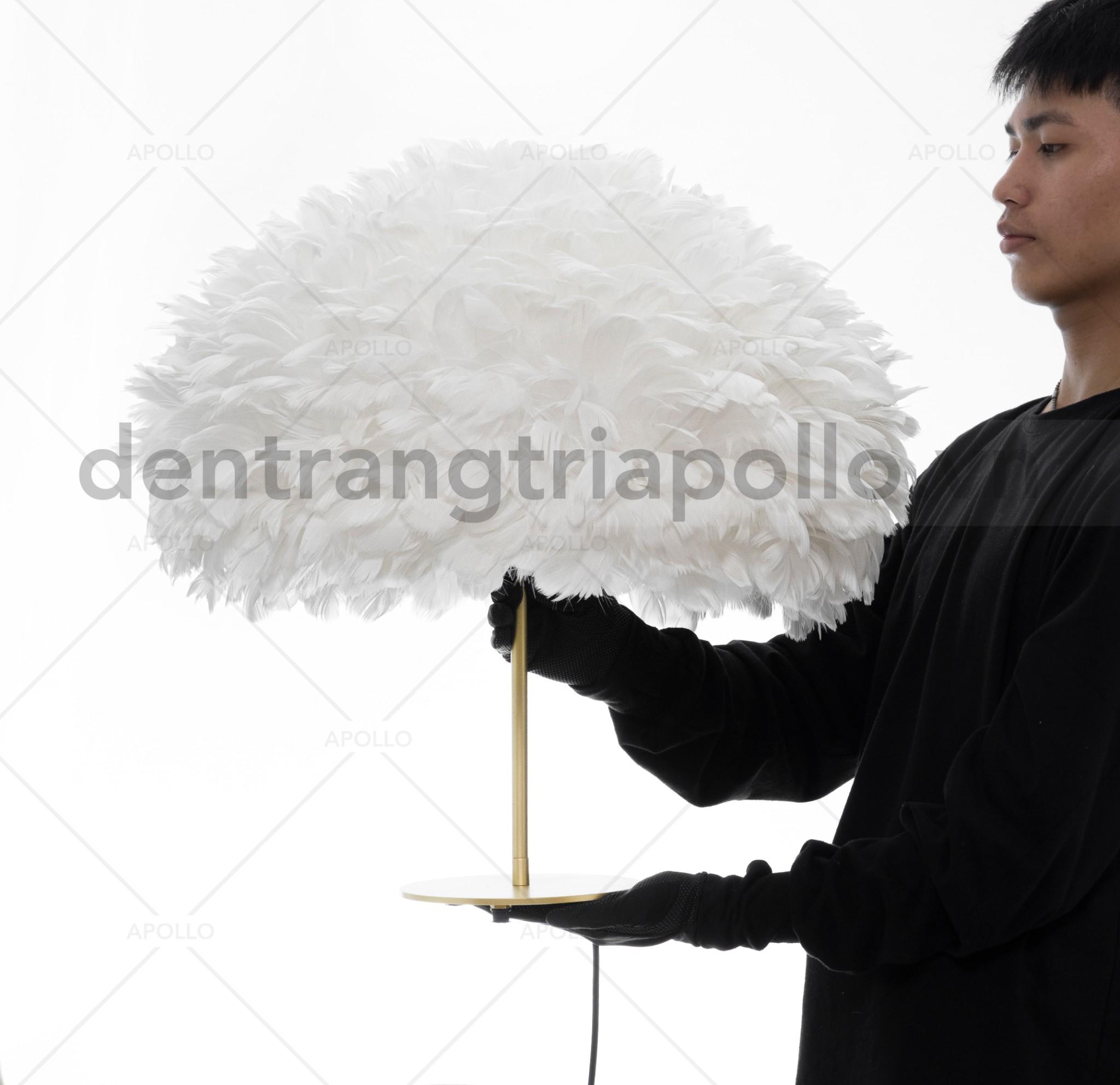đèn bàn lông vũ