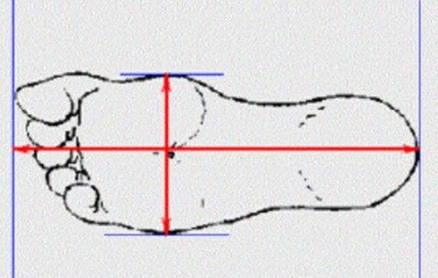 Cách đo size giày cho nam và nữ chuẩn nhất 2