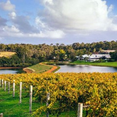 See How Beautiful Margaret River Wine Region Is