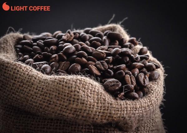cà phê robusta, cà phê robusta nguyên hạt, cà phê robusta răng xay