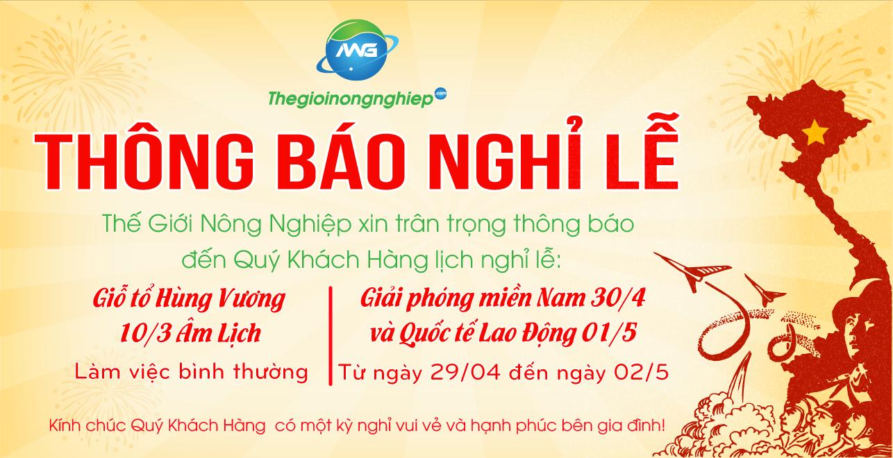 Lịch nghỉ lễ Giỗ tổ Hùng Vương, Ngày Giải phóng Miền Nam và Quốc tế Lao động  2021