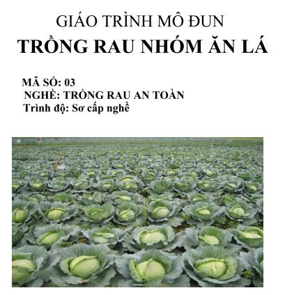 Giáo trình sơ cấp nghề – Nghề trồng rau an toàn Bộ Nông Nghiệp và PTTNT, Hà Nội – 2011