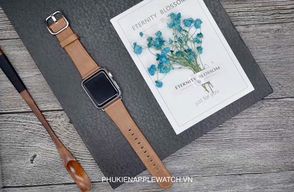 classic buckle apple watch