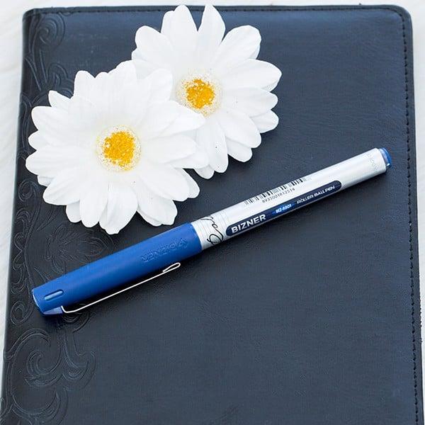 Bút lông bi Thiên Long - Bizner BIZ-RB01