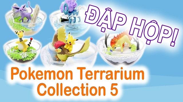 Cùng ngắm Pokemon Ball thủy tinh trong suốt với Terrarium Collection 5