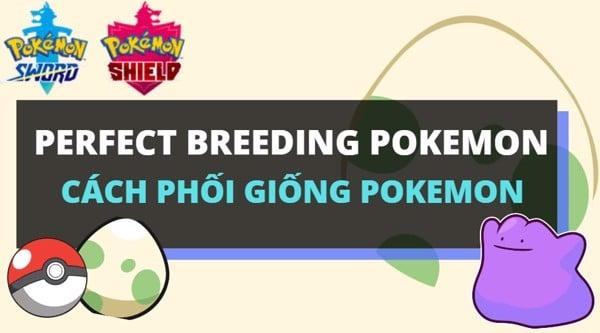 Perfect Breeding Pokemon - Cách sở hữu Pokemon hoàn hảo!