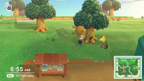 chat cay trong animal crossing