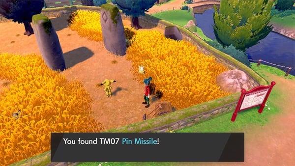 hướng dẫn tìm TM Pokemon Sword Shield