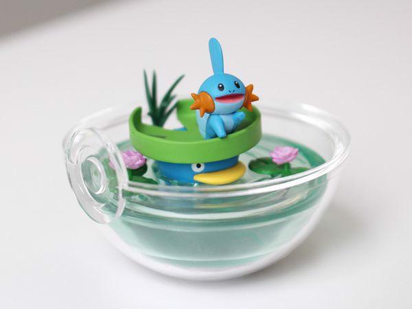 Lotad Mudkip Pokemon Terrarium Collection 8
