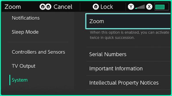 tính năng zoom của Nintendo Switch
